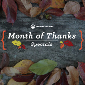 november_bundles_email_header_2_instagram-1